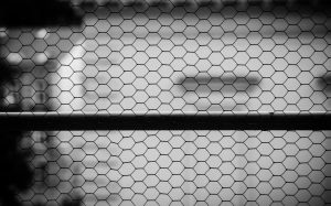 Drátek | foto