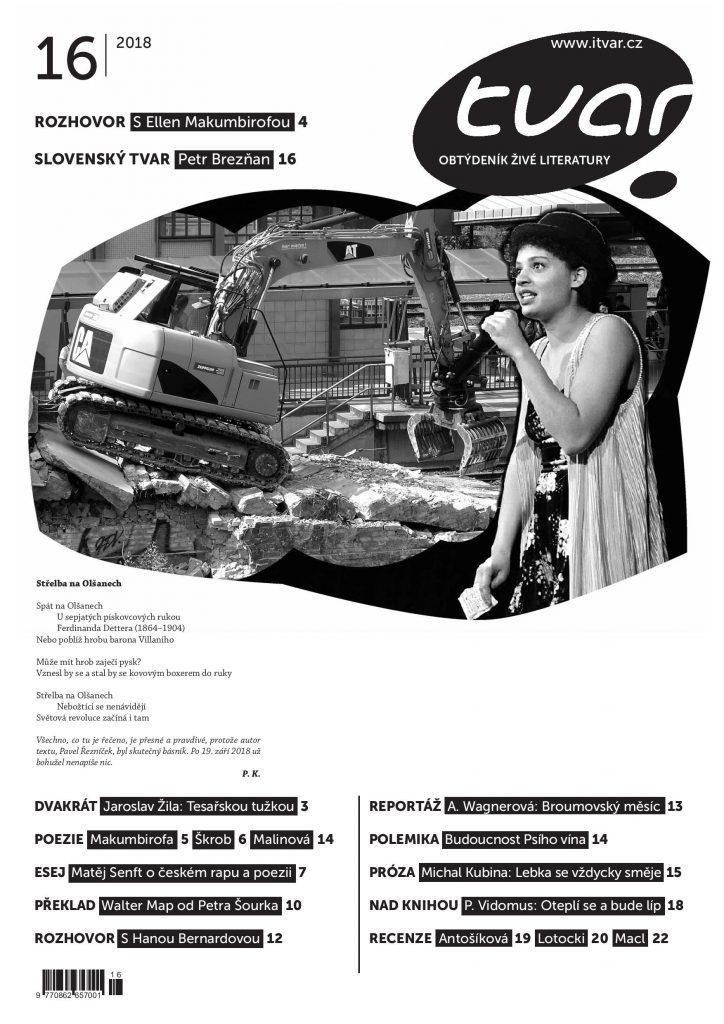 Tvar_16_2018_archiv-1-1-page-001
