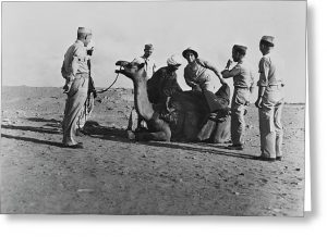 us-troops-ride-a-camel-somewhere-stocktrek-images