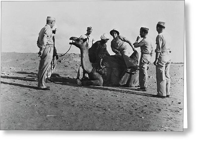 us-troops-ride-a-camel-somewhere-stocktrek-images
